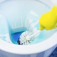 Nettoyeurs de toilette